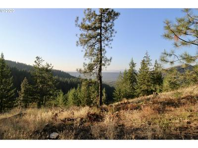 000 RAIL CANYON RD # 3, Ford, WA 99013 - Photo 2