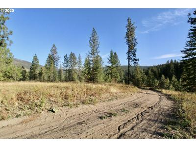 RAIL CANYON RD LOT 4, Ford, WA 99013 - Photo 1
