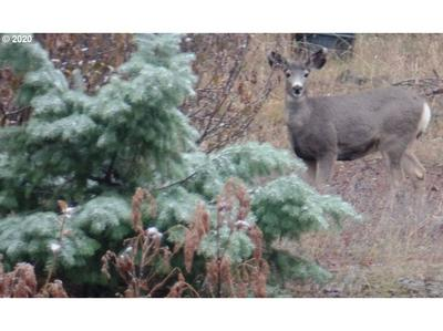 78307 LINCTON MTN RD # 4, Weston, OR 97886 - Photo 2