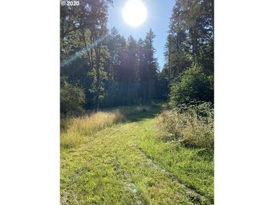 MCBETH, Eugene, OR 97405 - Photo 2