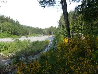 0 E ROARING RIVER RD #5000, Rhododendron, OR 97049 - Photo 2