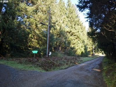 HUCKLEBERRY RIDGE RD 500, Brookings, OR 97415 - Photo 1