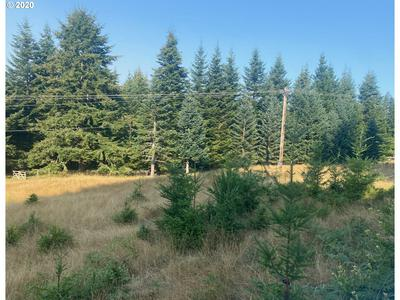 0 CAPE FERRELO RD, Brookings, OR 97415 - Photo 1