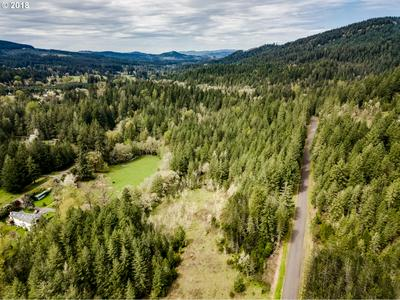 RR ANDERSON RD, Dexter, OR 97431 - Photo 2