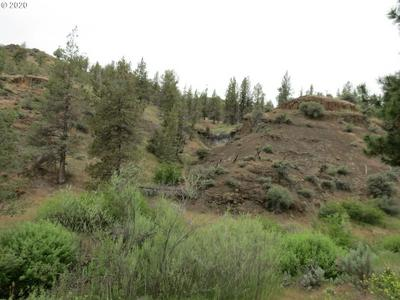 42788 ALDER CREEK RD, Fossil, OR 97830 - Photo 2