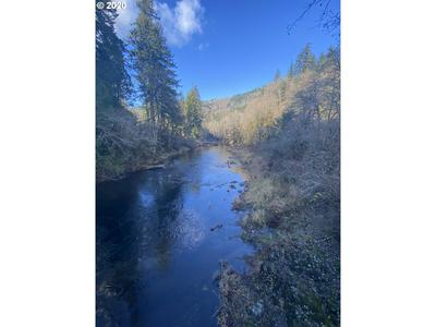 TRASK RIVER RD, Tillamook, OR 97141 - Photo 2
