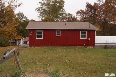 3610 DEER RIDGE RD, Goreville, IL 62939 - Photo 1