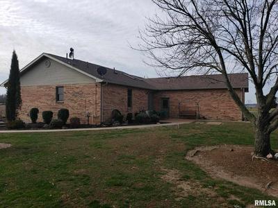 350 GEORGE BLUFF LOOP, Cypress, IL 62923 - Photo 2