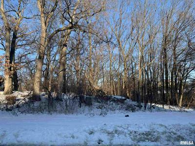 3 WHITE OAK CT, Moline, IL 61265 - Photo 2