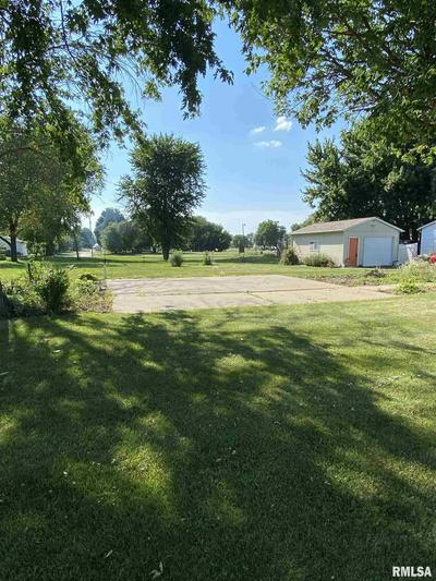115 N 6TH AVE, New Windsor, IL 61465 - Photo 2