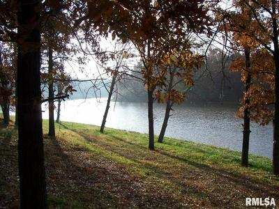 71 LAKE VISTA DR, Taylorville, IL 62568 - Photo 2