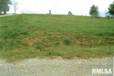 0000 1849 COUNTY ROAD 1400 N, Carmi, IL 62821 - Photo 2