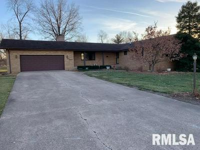 416 E MENARD ST, RIVERTON, IL 62561 - Photo 2