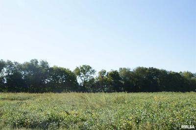 1409 N TOWN AVE LOT 3, Princeville, IL 61559 - Photo 2