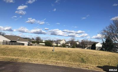 256 KARAGEN CIR, Germantown Hills, IL 61548 - Photo 2