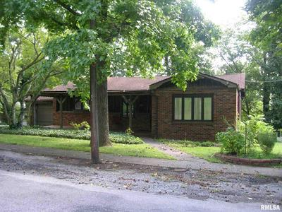 206 N 6TH ST, Vienna, IL 62995 - Photo 1