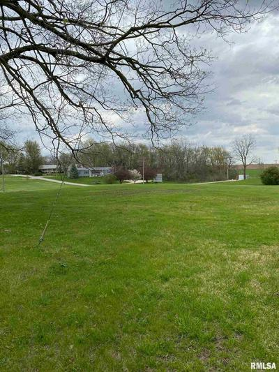 290 N DILLEY ST, ROSEVILLE, IL 61473 - Photo 1