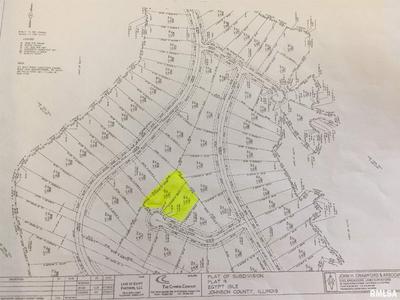 LOT 422 BUCKEYE HILL LANE, Goreville, IL 62922 - Photo 1