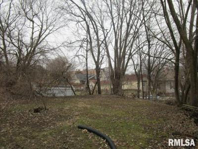 151 ROBINSON CT, CANTON, IL 61520 - Photo 2