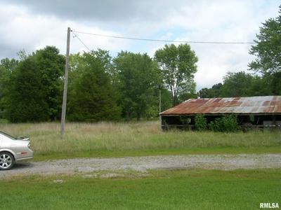 12530 US HIGHWAY 45 N, Ozark, IL 62972 - Photo 1