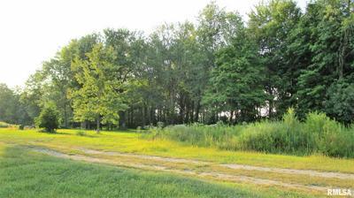 195 CAMELIA RD, Flora, IL 62839 - Photo 2