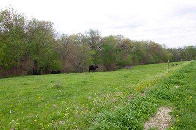 0 BRIAR BLUFF ROAD, Coal Valley, IL 61240 - Photo 2