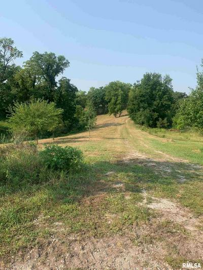 LOTS 10 & 5 FANCY CREEK, Andalusia, IL 61232 - Photo 1