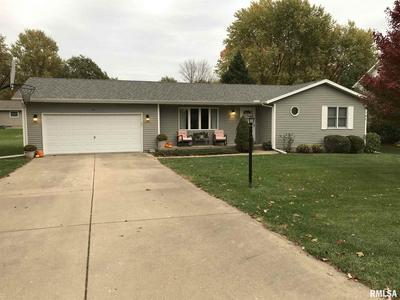 211 N DANIELS ST, Elmwood, IL 61529 - Photo 1