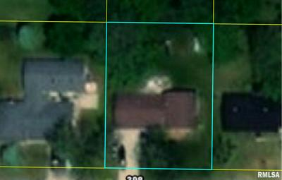 117 POPLAR ST, Canton, IL 61520 - Photo 1