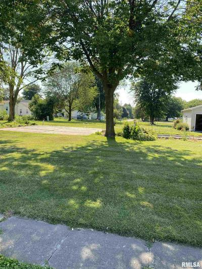 115 N 6TH AVE, New Windsor, IL 61465 - Photo 1