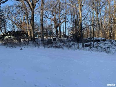 3 WHITE OAK CT, Moline, IL 61265 - Photo 1