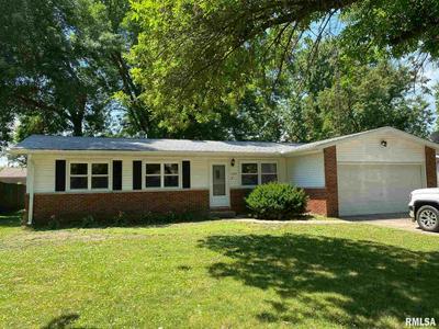 1209 COMMANCHE RD, Auburn, IL 62615 - Photo 1