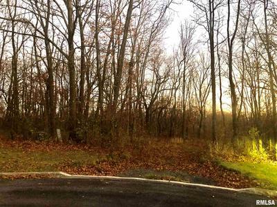 LOT 16 GRACE LANE, Edwards, IL 61528 - Photo 1