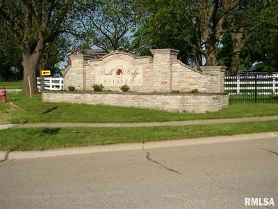 6 STALLION WAY, Goodfield, IL 61742 - Photo 1