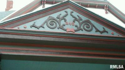 243 E CHESTNUT ST, CANTON, IL 61520 - Photo 2
