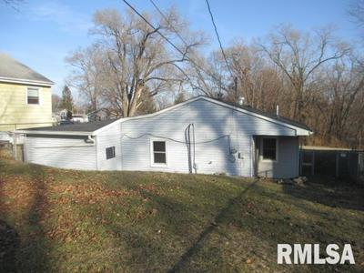 1015 6TH ST, COLONA, IL 61241 - Photo 2