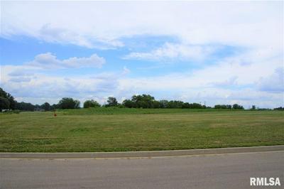 LOT 19 VETERANS DRIVE, Princeville, IL 61559 - Photo 1
