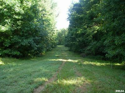 000 PARKS LANE, Stonefort, IL 62987 - Photo 1