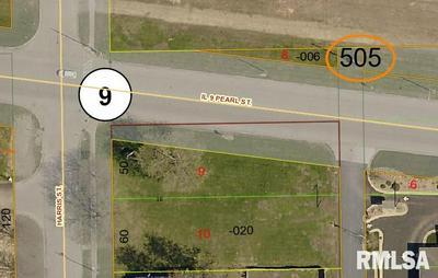 108 S HARRIS ST, Tremont, IL 61568 - Photo 1