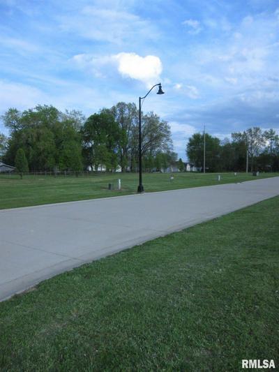 213 WASHINGTON PL, Riverton, IL 62561 - Photo 2