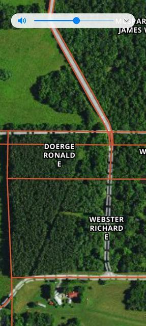 000 TOM DICK HILL ROAD, Stonefort, IL 62987 - Photo 1