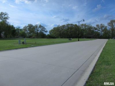 201 WASHINGTON PL, Riverton, IL 62561 - Photo 2