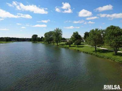 905 WHITE ASH LN, Williamsville, IL 62693 - Photo 2