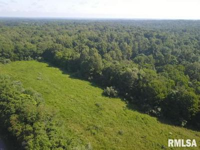 000 CREAL SPRINGS ROAD, Tunnel Hill, IL 62972 - Photo 1