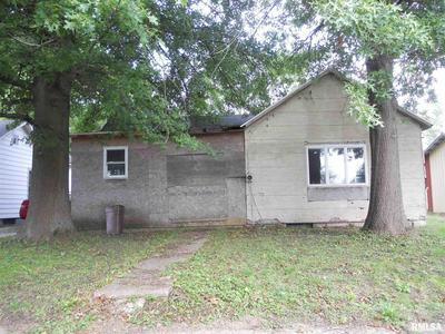 145 S RILE ST, Bushnell, IL 61422 - Photo 1