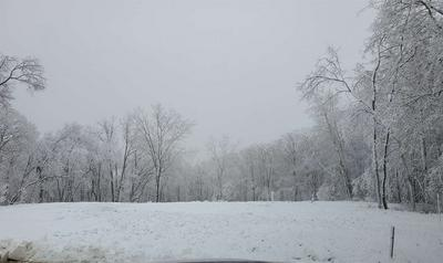 127 ROSEMARY LN, Germantown Hills, IL 61548 - Photo 1