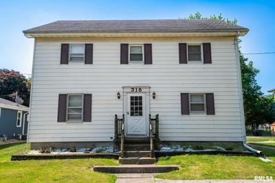 316 E SOUTH ST, Tremont, IL 61568 - Photo 2