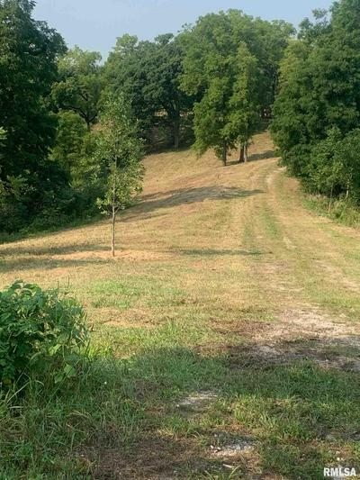 LOTS 10 & 5 FANCY CREEK, Andalusia, IL 61232 - Photo 2