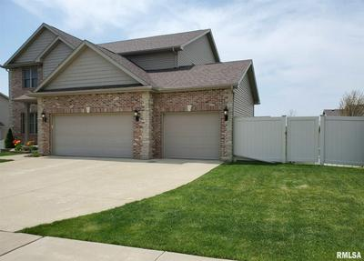 7021 N BUCKEYE DR, Edwards, IL 61528 - Photo 2