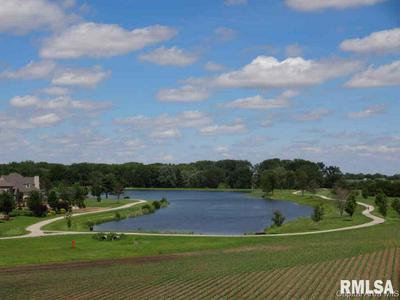 412 BURR OAK DR, Williamsville, IL 62693 - Photo 1